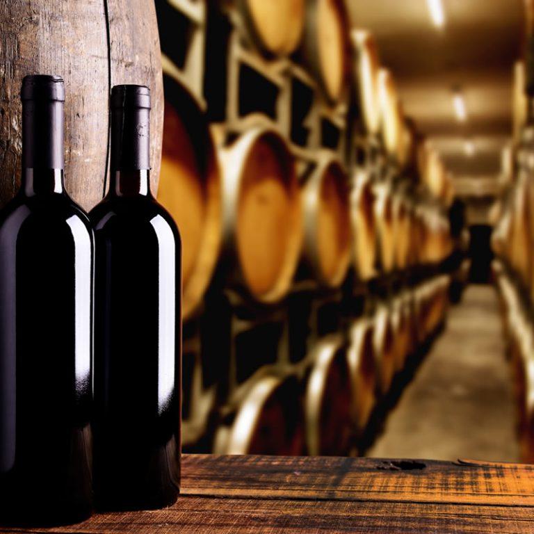 Wine & Culinary Tourism Cannigione Vacanze